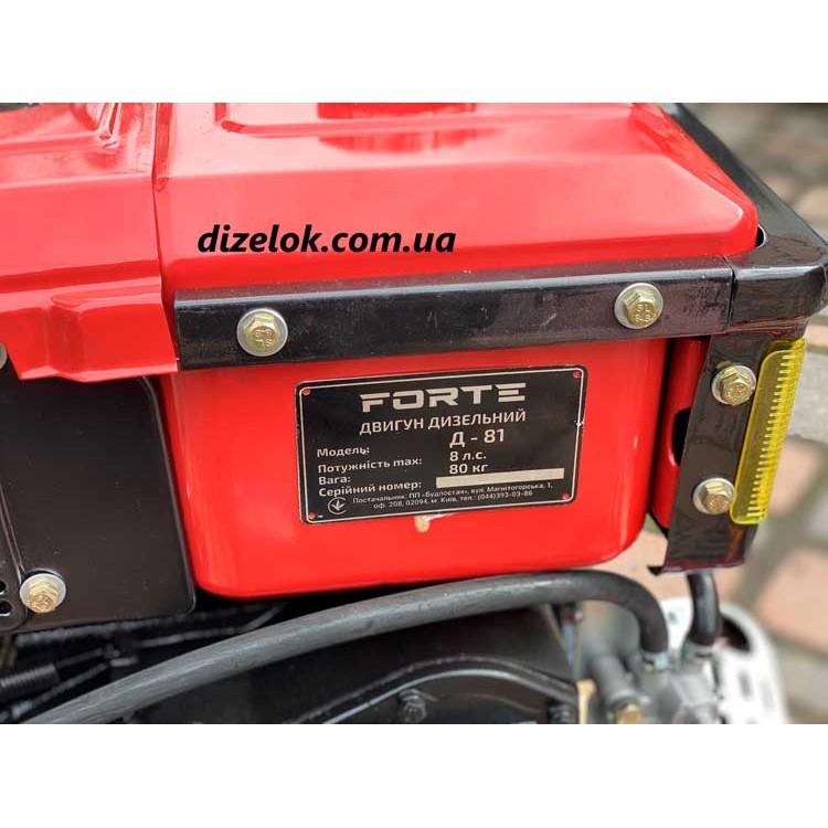 Двигатель водный FORTE Д-81